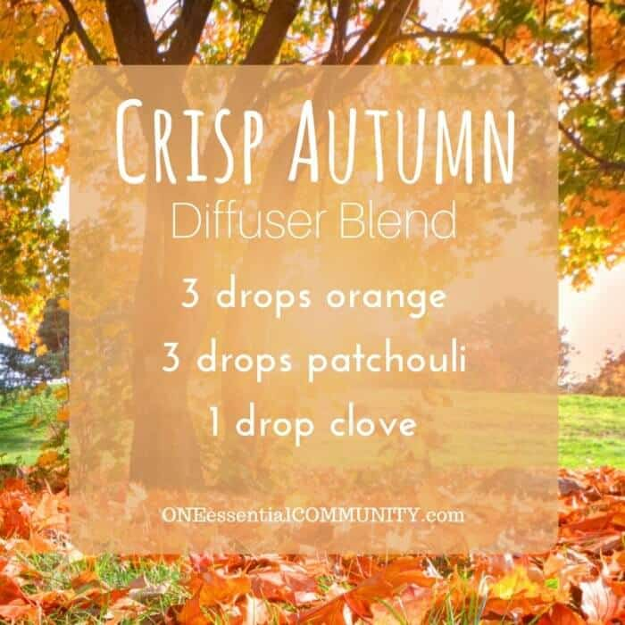 20 favorite FALL essential oil diffuser blend recipes - pumpkin pie, flannel, sweater weather, spiced chai, apple pie, immune booster, harvest, crisp autumn, and many more! plus a free printable of all the recipes #essentialoils #essentialoilrecipes #diffuserrecipes #diffuserblends #fallDIY #fallessentialoils