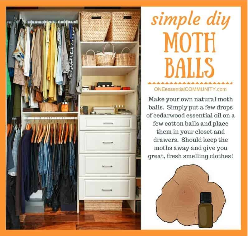 essential oil tip & hack- Make your own natural moth balls. Simply put a few drops of cedarwood essential oil on a few cotton balls and place them in your closet and drawers. Should keep the moths away and give you great, fresh smelling clothes!