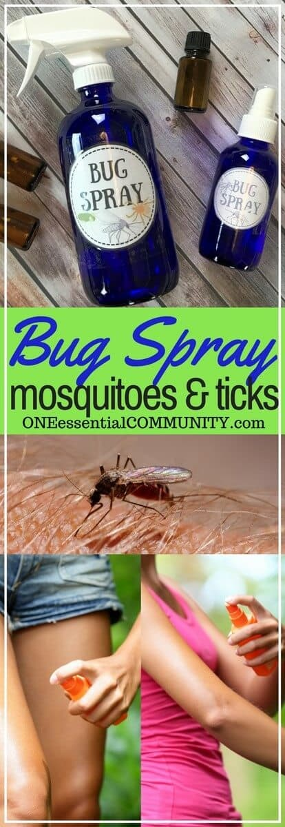 Diy Bug Spray That Works Kid Safe Options One