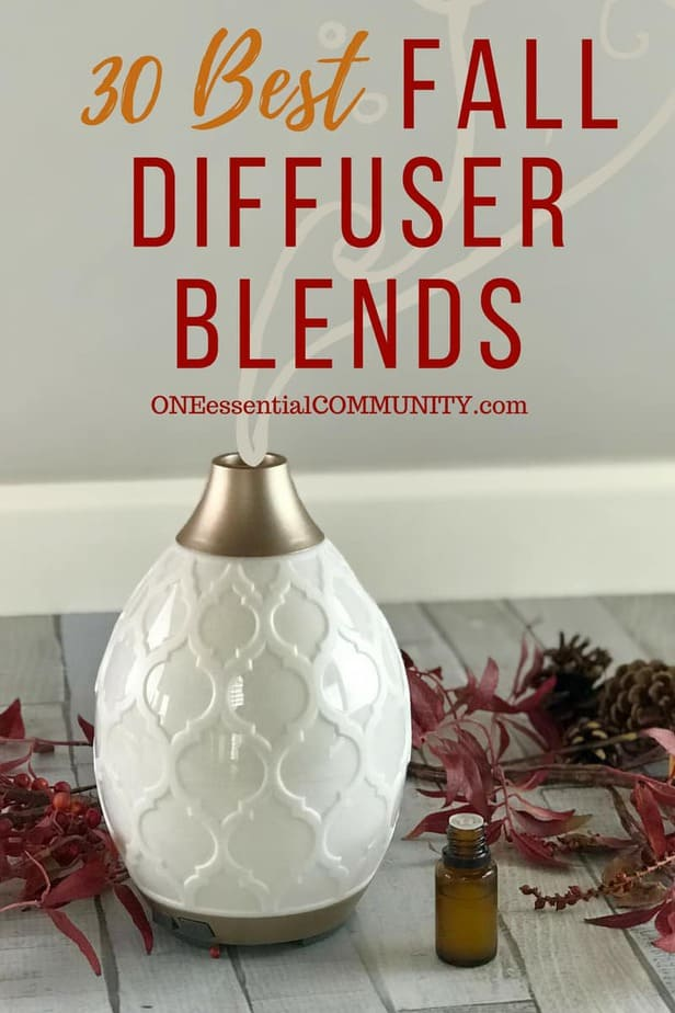 30 best FALL essential oil diffuser blend recipes - pumpkin pie, flannel, sweater weather, spiced chai, apple pie, pumpkin spice, immune booster, harvest, crisp autumn, and many more! plus a free printable of all the recipes {essential oil recipes, essential oil uses, fall diffuser blends doTERRA, Young Living, free printable diffuser recipes}
