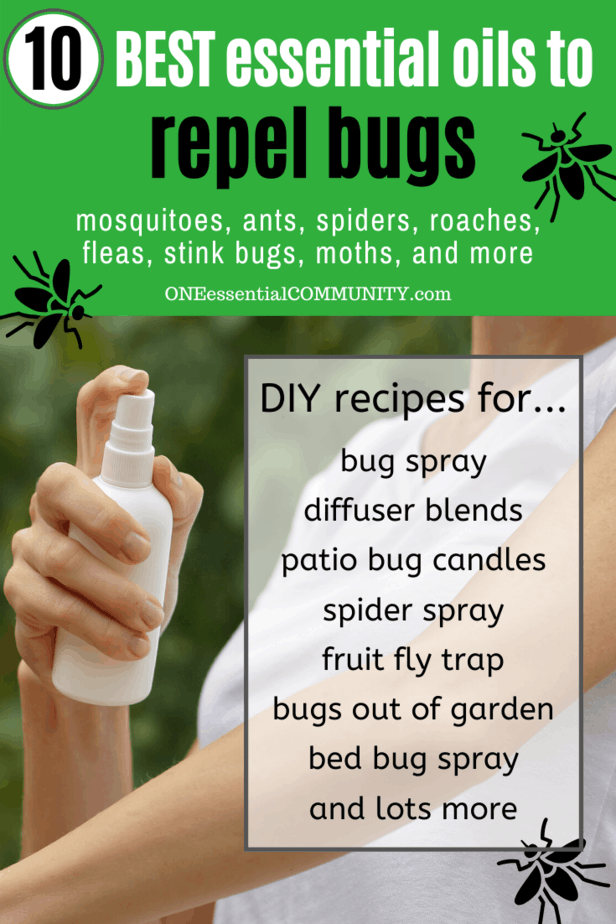 spraying homeamde insect repellent on arm
