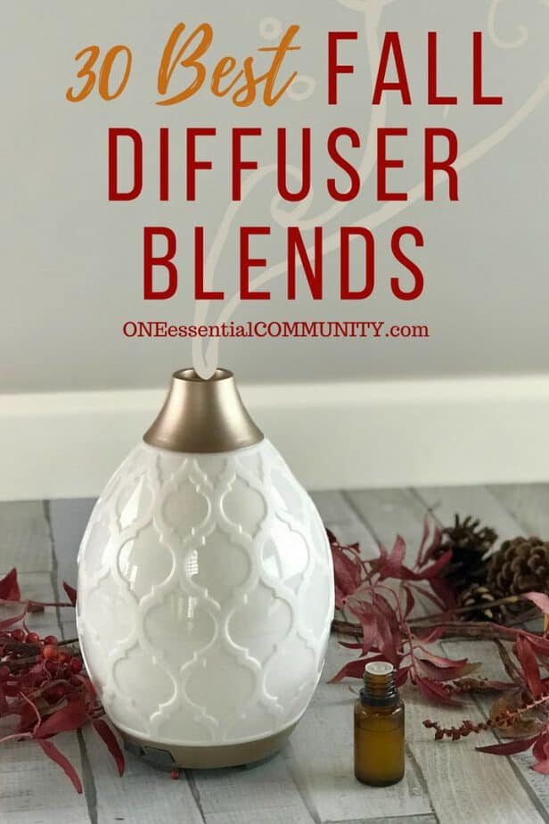 30 best FALL essential oil diffuser blend recipes - pumpkin pie, flannel, sweater weather, spiced chai, apple pie, pumpkin spice, immune booster, harvest, crisp autumn, and many more! plus a free printable of all the recipes {#fall, #diy, #doterra, essential oil recipes, essential oil uses, fall diffuser blends doTERRA, Young Living, free printable diffuser recipes}