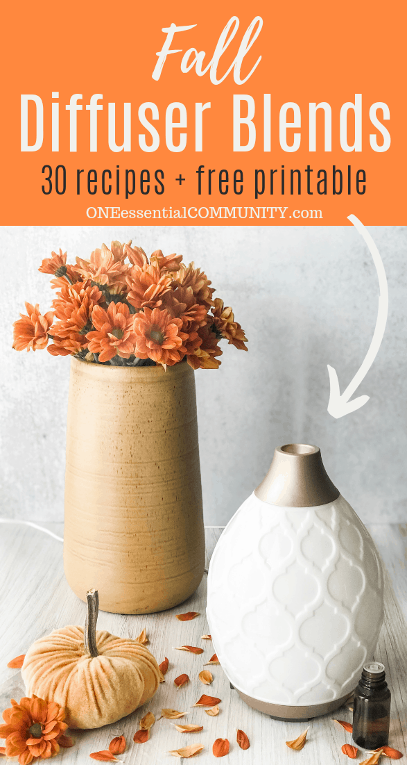 30 Best Fall Essential Oil Diffuser Blend Recipes Free Printable One Essential Community